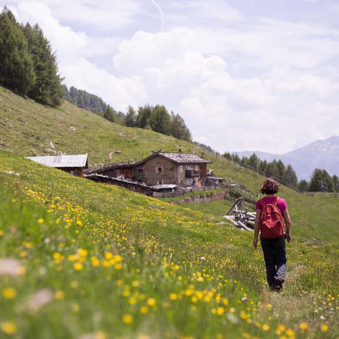 Wanderparadies Sonnenberg