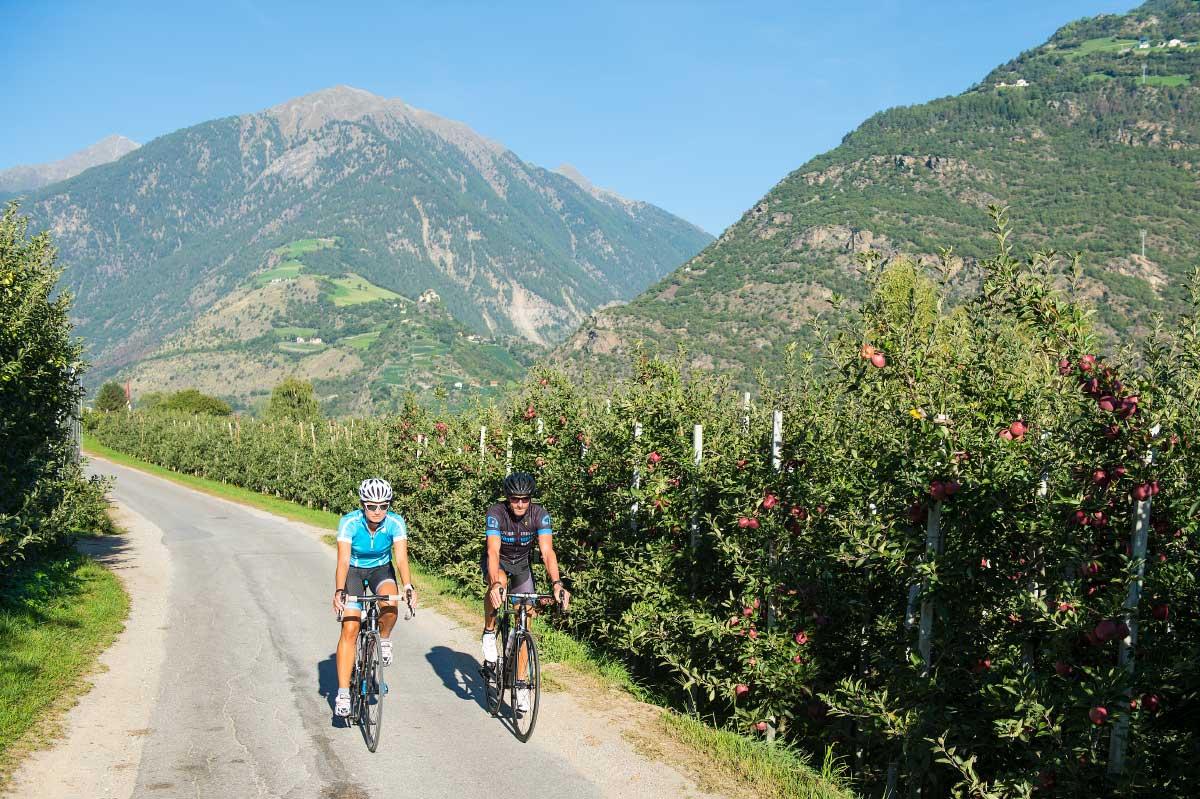 Rennradfahren In Naturns / Südtirol